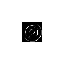 Lányka csillogós pitypang virágos rövid ujjú póló